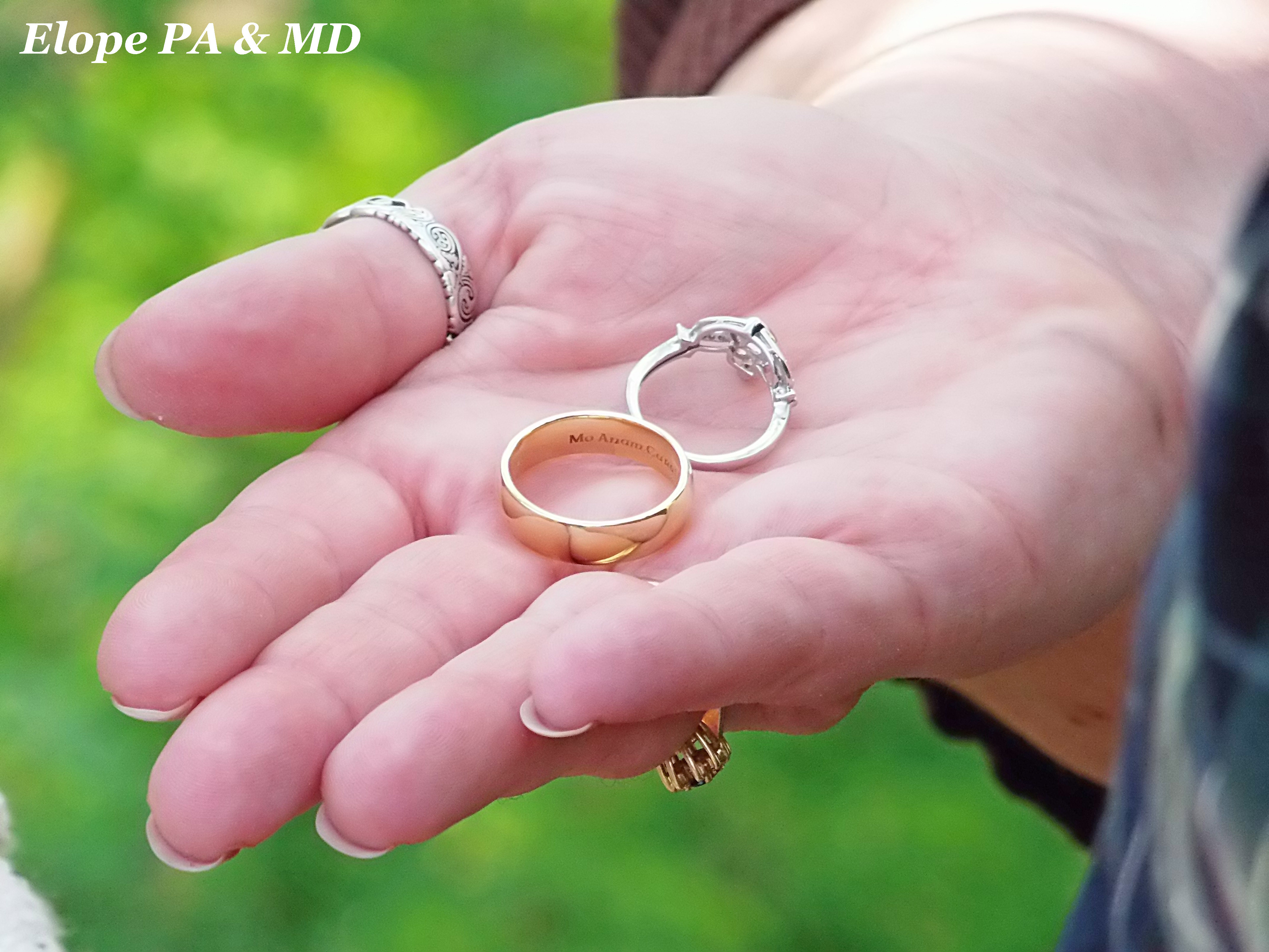 Fresh Cheap Wedding Rings Maryland | Wedding